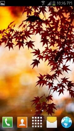 Autumn Season Go Theme