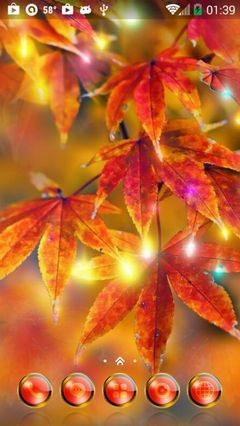 Autumn Leaves 389