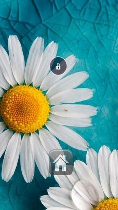 Daisies Lock Screen