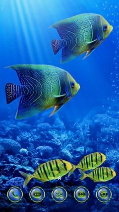 Underwater World 410