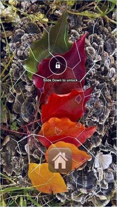 Autumn Colors Lock Screen