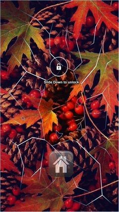 Autumn Folliage Lock Screen