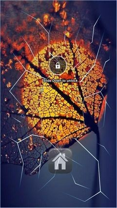 Autumn Illusion Tree Lock Screen