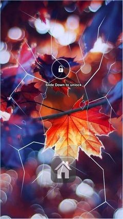 Autumn Leaf Sunlight Lock Screen