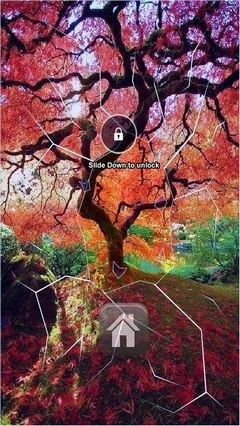 October Tree Lock Screen