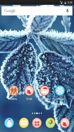 Cold leaves wide Apex Launcher Theme