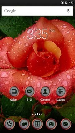 Orange rose droplets Nova Launcher Theme-