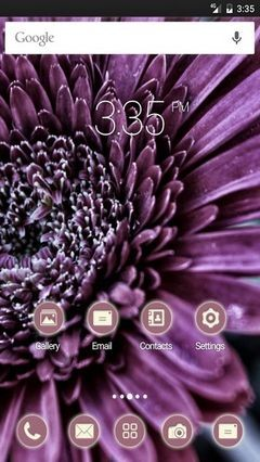 Flower close up Nova Launcher Theme