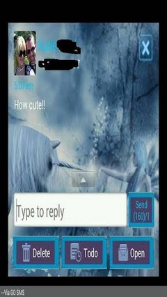 Fairies GO SMS Theme 1.0
