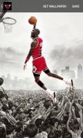 Chicago Bulls Wallpapers