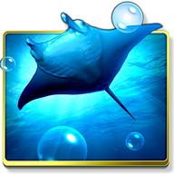 Ocean HD -Live Walpaper