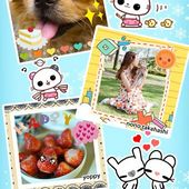 My Photo Sticker 2 Free