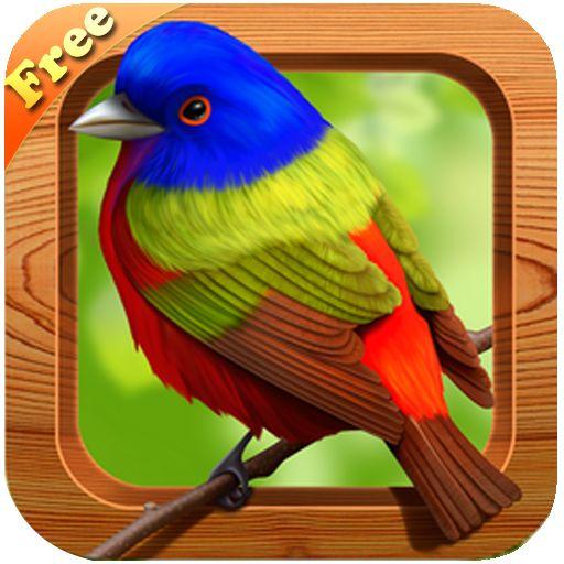 برنامج الطير المغني free bird