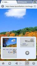 xScope browser [vhenzo.com]
