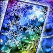 Colorful Winter Snowflakes LWP