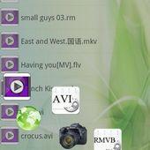 Movies FLV RMVB MP4 AVI Player