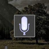voice action plus