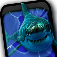 Angry Shark Jaws Crack Screen
