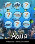 Aqua Live
