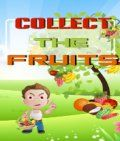 Collect The Fruits (176x208)
