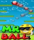 Mr Ball (176x208)