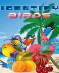 Identify Birds (176x220)