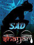 Sad Shayari (240x320)