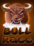 Bull Race (240x320)