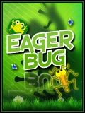 Eager Bug- Download Free!