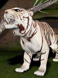 Pocket Tiger