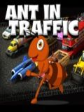 Ant In Traffic - Download