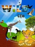 Wild Life Puzzle (Touch)