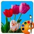 Como desenhar flores 360x640
