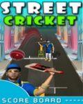 Gali Cricket