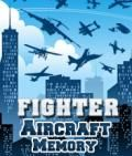 Fighter Aircraft Memory (176x208)