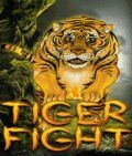 Tiger Fight (176x208)