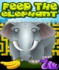 Feed The Elephant (176x208)