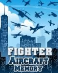Fighter Aircraft Memory (176x220)