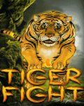 Tiger Fight (176x220)