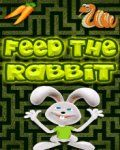 Feed The Rabbit (176x220)