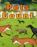 Количество домашних животных