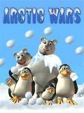 حرب القطب الشمالي