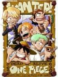 One Piece Horizontal Action