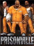 Prisonville S40