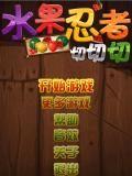 Fruit Ninja II (chinese)