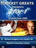 2 In 1 great cricket games