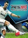 PES 2013 ( Pro Evolution Soccer )