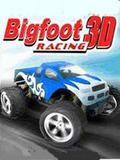 BigFootRacing240