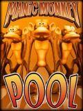 Manic Monkey Pool