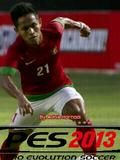 PES 2013 AFF Cup Edition
